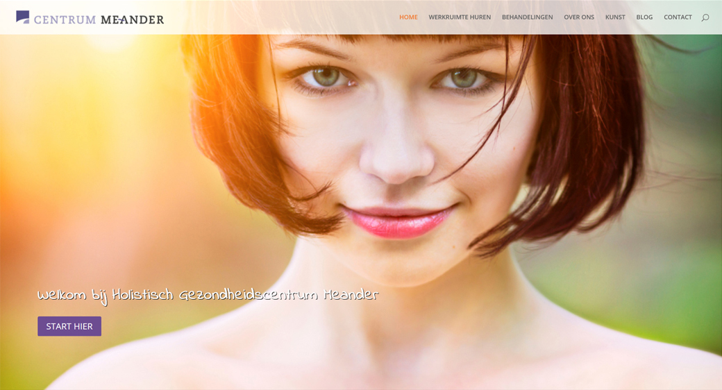 Meander website homepage